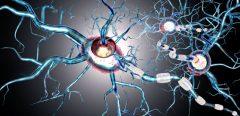 Sclérose en plaques : les signes qui annonceraient l'arrivée de la maladie