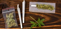 Attention aux ingestions accidentelles de cannabis par les enfants