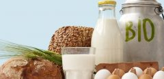 Manger bio :  la solution anti-cancer ?