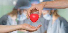 4 personnes greffées d'une même donneuse atteintes de cancers
