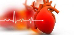 Un nouveau booster du cœur contre l'insuffisance cardiaque