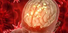 Mieux cibler les tumeurs cérébrales grâce à des nanoparticules téléguidées