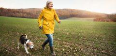 Prévenir la maladie d'Alzheimer en soignant d'abord son coeur