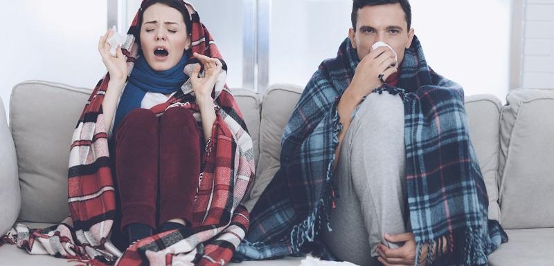 L'épidémie de grippe