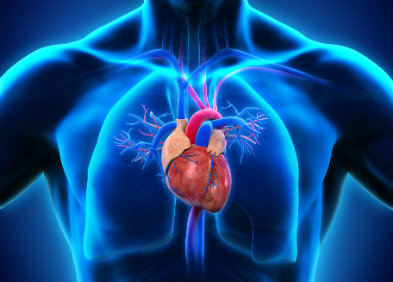Greffe cœur-poumons