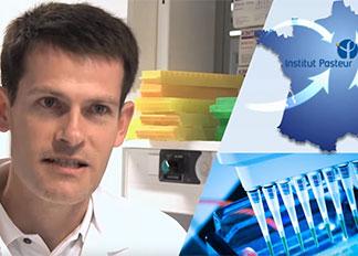 Vidéo de l'Institut Pasteur : Les virus grippaux