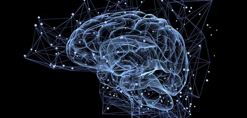 Image de synthèse représentant l'activité du cerveau
