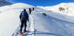 Ski de piste ou de fond, raquette à neige … quel sport à la neige ?