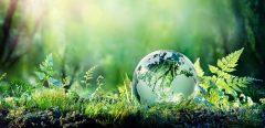 Comment la biodiversité est-elle une source d'inspiration pour la médecine ?