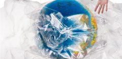 Toujours plus de microplastiques dans notre assiette