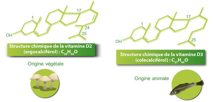 structure_chimique