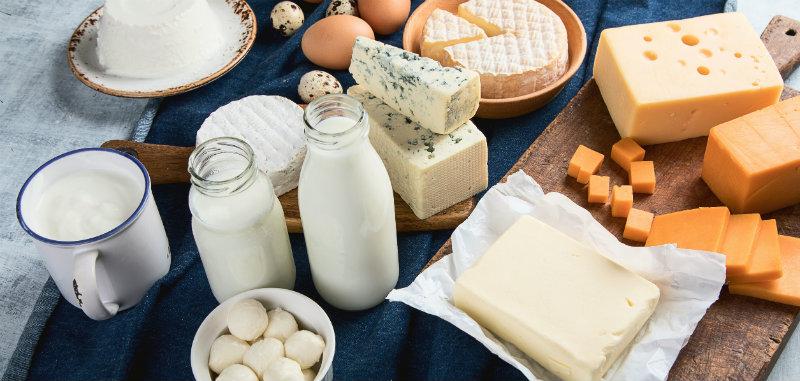 Différents types de produits laitiers fermentés pour lutter contre l'ostéoporose
