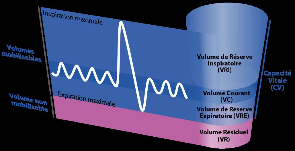 Schéma d'une spirométrie