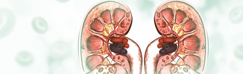 Le déroulement de l'examen d'une urétéroscopie