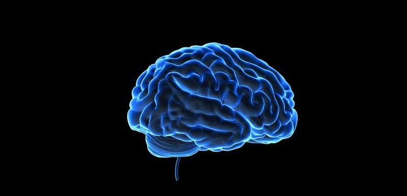 Des outils pour reconnaître les tumeurs cérébrales de l'enfant
