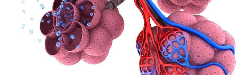 emphysème pulmonaire : affection des alvéoles pulmonaires, augmentation du volume jusqu'à destruction de la paroi
