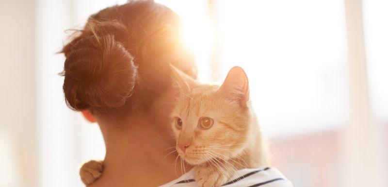 Femme qui tient son chat dans ses bras