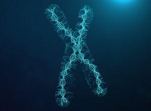 chromosome 22 en anneau