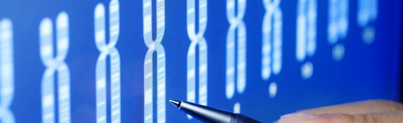 Chromosomes affichés sur un écran pour détecter si tout est normal
