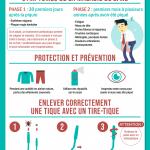 Infographie sur la maladie de Lyme (tiques)