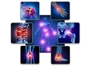 7 images d'articulations et muscles