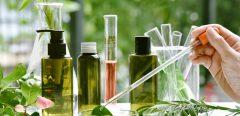 Des plantes qui produisent des vaccins contre la grippe