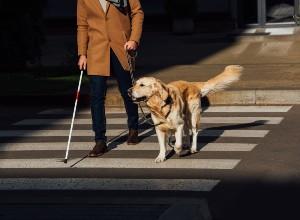 Une personne malvoyante avec son chien