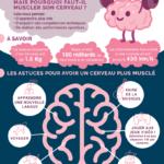 Infographie pour muscler son cerveau