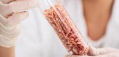 Viande artificielle : Bientôt dans nos assiettes ?
