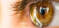 Une cornée artificielle pour retrouver la vue