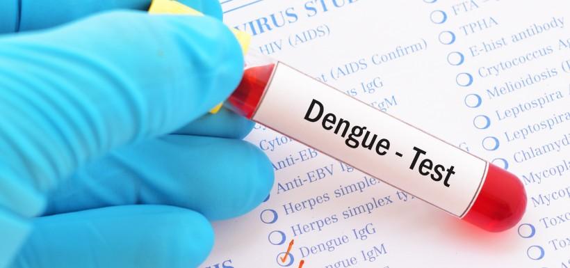 Mieux qu'un traitement contre la dengue, une bactérie préventive