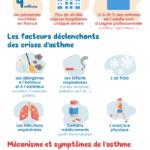 Infographie: l'asthme en France