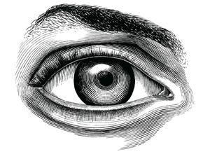 Dessin d'un œil